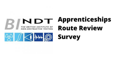 Apprenticeships Route Review Survey